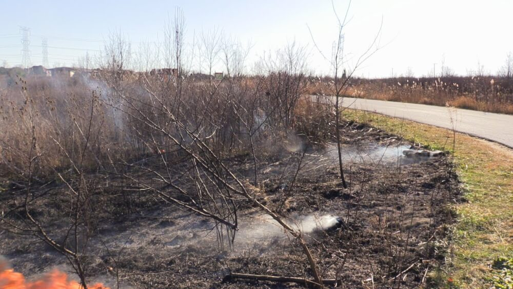 brush fire at 135th and Wolf Road. Photo courtesy of the Orland Fire Protection District
