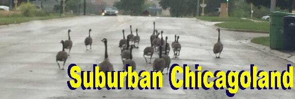 Suburban Chicagoland