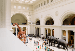 Field Museum waives entrance fee for all of February