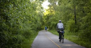 Dan Ryan Woods CC Forest Preserve District. Photo courtesy of the Cook County Forest Preserve District