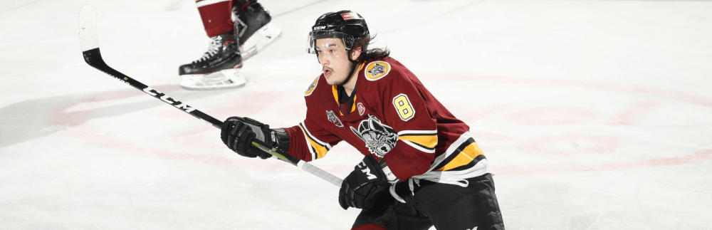 Tyler Wong named Chicago Wolves 2018-19 AHL Man of the Year