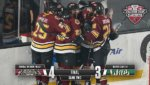 Chicago Wolves take second game of playoffs against Iowa Wild. Photo courtesy of Chicago Wolves. May 2019
