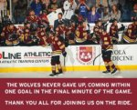 Despite rally Wolves lose Calder Cup Championship in 5 games