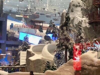 Ski Dubai from inside of the Mall of the Emirates at the entrance of the Kempinski Hotel. Photo courtesy of Ray Hanania