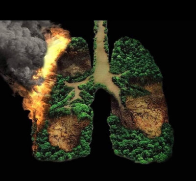 Graphic depicting fires savaging the Amazon forests, designed by Extinction Rebellion Chicago