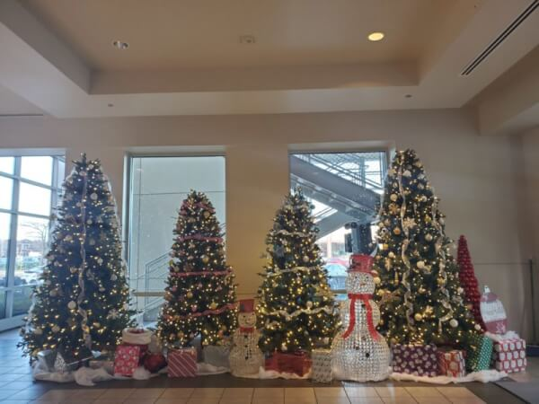 Town President Larry Dominick decorates Town hall for Christmas