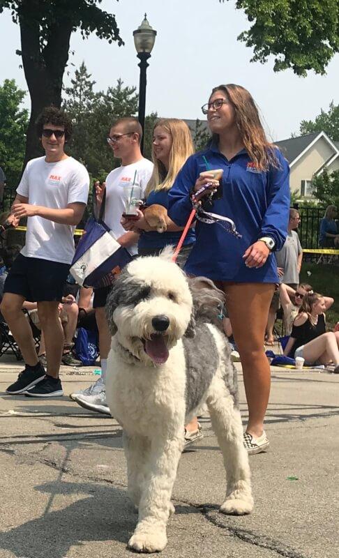 La Grange's Virtual Pet Parade