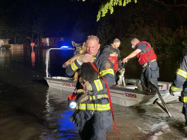 Lyons Fire Department was busy that Sunday helping about 50 residents and 19 pets leave their homes that were suddenly flooded after torrential rains caused Salt Creek to overflow its banks.