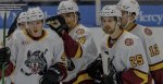 Chicago Wolves courtesy of the Chicago Wolves