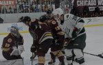 Chicago Wolves lose to Grand Rapids Griffins February 2021. Photo courtesy of the Chicago Wolves