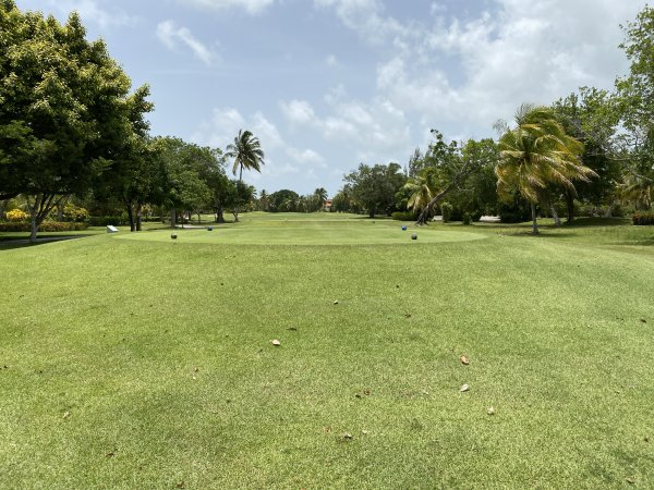 Typical Fairway at the Cocotal Golf Course at the Grand Reserve Paradisus Palma Real. Photo courtesy of Ray Hanania