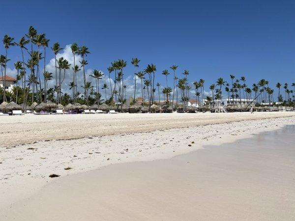 Beach view facing north at the Grand Reserve Paradisus Palma Real. Photo courtesy of Ray Hanania