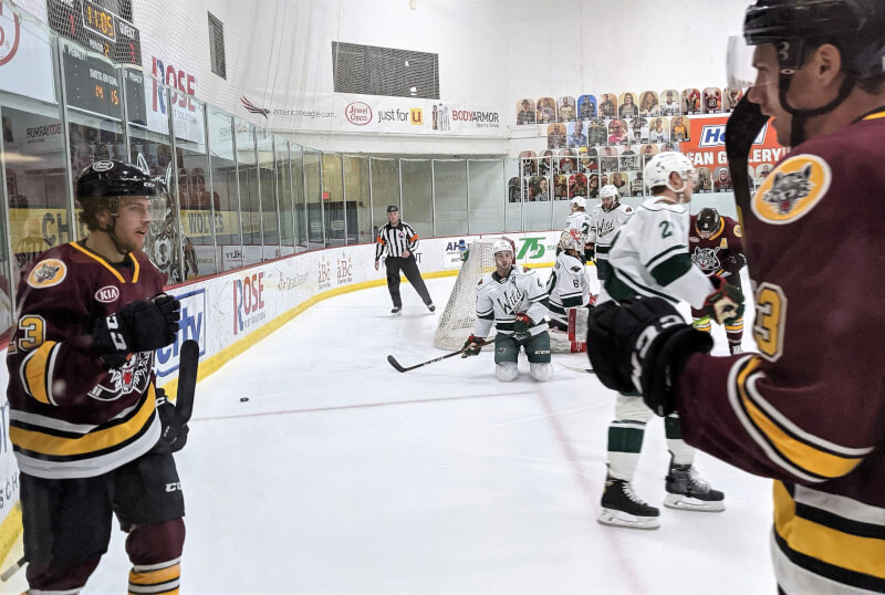 Chicago Wolves forward David Gust (left) and Cole Smith (right) after Gust scores May 1. Photo courtesy of the Chicago Wolves