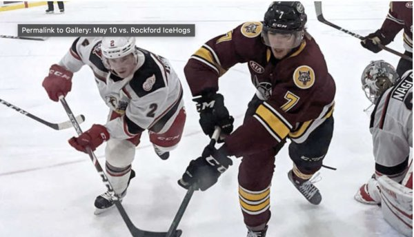 Chicago Wolves Hockey. Photo courtesy of the Chicago Wolves